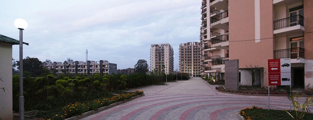 sushma-elite-cross-flats-zirakpur